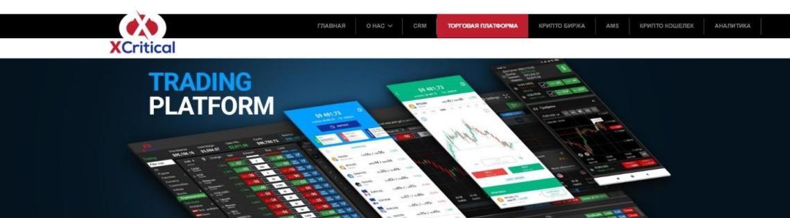 'Описание торговой платформы Xcritical: функционал и характеристика
